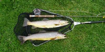 Trout Fishing in Orkney